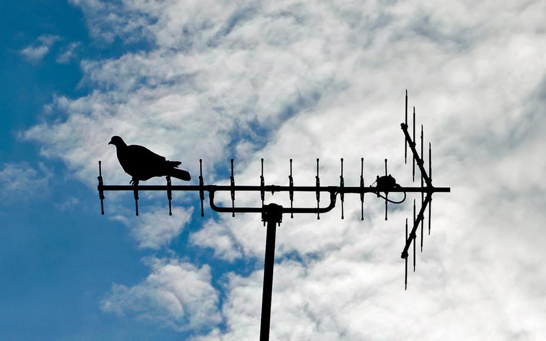 El funcionamiento de las Antenas y sus diferencias